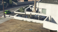 Vehicle Import Tail GTAO End Vinewood Dog Park