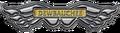 Logo-IV-Dewbauchee.png