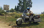 SAHP Officer and Bike GTAV