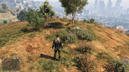 Treasure Hunt-GTAO-Chest Located