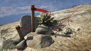 Peyote Plants GTAVe 03 Mt Chiliad View
