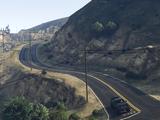 Buen Vino Road