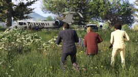 GTA Online FAFF Screenshot 2