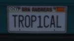 Custom Plate GTAO TR0P1CAL