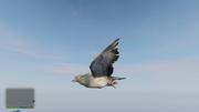 Peyote Plants Animals GTAVe Pigeon