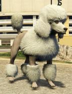 Poodle-GTAV-PS4