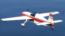 Mallard-GTAV-RearQuarter