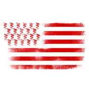 Coil-USA-Flag-Logo-Design-GTAO
