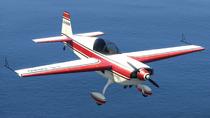 Mallard-GTAV-FrontQuarter