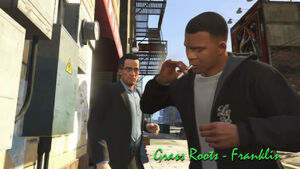 Gtav grass roots franklin