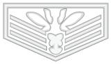 Logo-IV-Ocelot