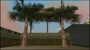PalmTrees-GTAVC-Short
