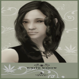 WhiteWidow-GTAIV-Poster