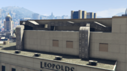 Leopolds-GTAV-TextureBug