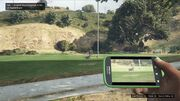 Wildlife Photography Challenge GTAVe Husky Vinewood Hills Dog Exercise Park
