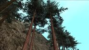 Sequoia-GTASA-SS2