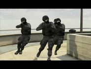 The fib swat team