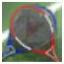 LifeInvader GTAV Dena Profile tiny