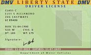 DriverLicense-StateofLiberty-GTAO