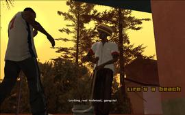 Life'sABeach-GTASA-SS1