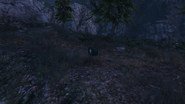 ForestSurvival-GTAO-HealthPack1