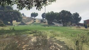 Vinewood Hills Dog Exercise Park GTAV overview