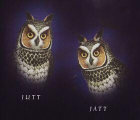 Jutt Jatt book