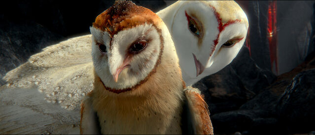 File:2010 legend of the guardians the owls of ga hoole 011.jpg