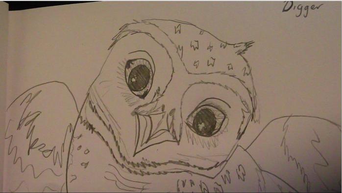 Line Drawing Wiki : Image digger drawing guardians of ga hoole wiki fandom