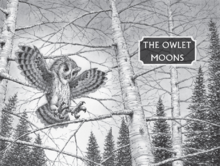 The owlet moons