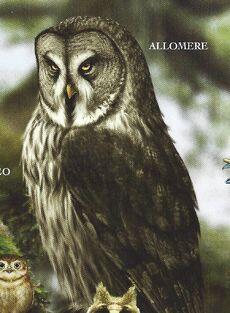 Art book allomere