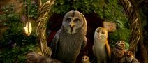 Legend-of-the-guardians-disneyscreencaps.com-10475