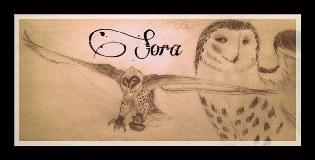 File:Fan art of Sora.jpeg