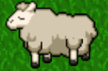 78 Sheep lvl 7