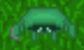 43 Box turtle lvl 90