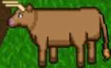77 Bull 11