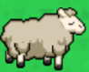 Sheep lv7