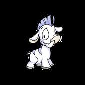 Moehog white