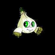 Kiko garlic