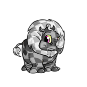 CheckeredTonu