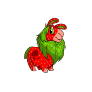 Gnorbu strawberry
