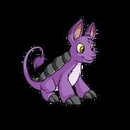 Purple bori