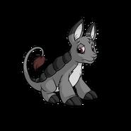 Grey bori