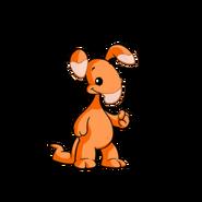 Orange blumaroo