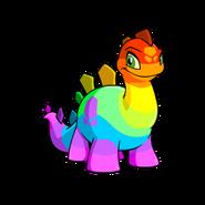 Chomby rainbow