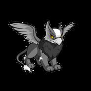 Eyrie skunk