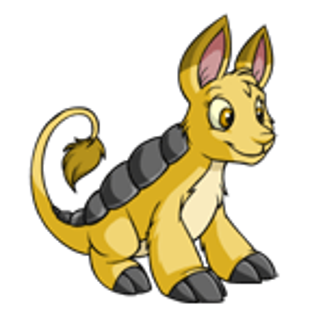 Yellow Bori