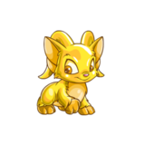 Acara gold