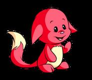 Red kacheek cropped