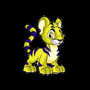YellowKougra